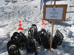 schneeschuhlaufen teamevent